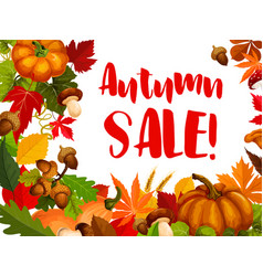 autumn seasonal sale offer promotion poster design vector image vector image