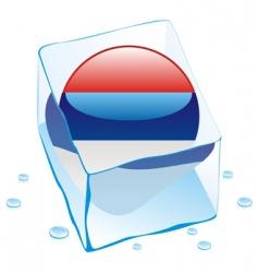 frozen button flag of Serbia vector image vector image