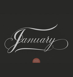 hand drawn lettering january elegant vector image
