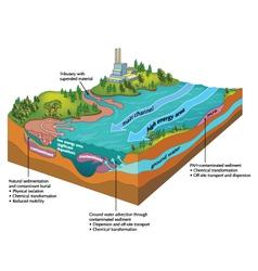 River contamination vector