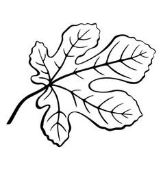 Fig leaf black pictogram vector