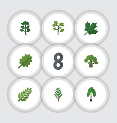 Flat icon nature set of jungle oaken garden and vector