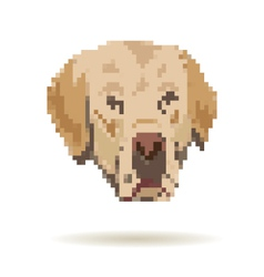 Labrador abstract isolated vector