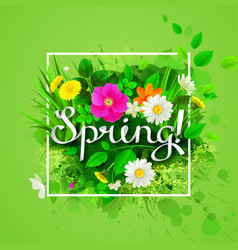 The spring composition with flowering chamomiles vector