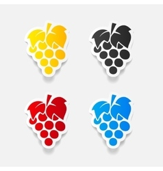 Realistic design element grapes vector
