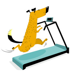fast running dog on treadmill cute racing pet vector image