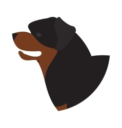 Dog head rottweiler vector