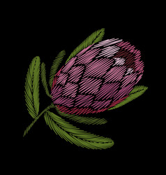 Embroidery floral patch tropical protea blossom vector