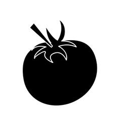 Pictogram tomato juicy vegetable icon vector