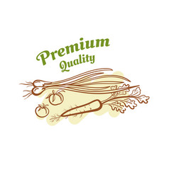 premium quality badge design vector image