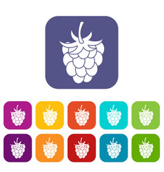 Raspberry or blackberry icons set flat vector