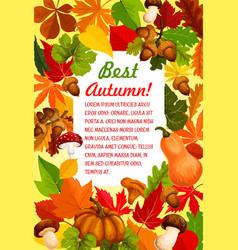 Autumn leaf and pumpkin banner for fall season vector