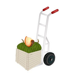 Hand truck loading green pumpkins in shipping box vector