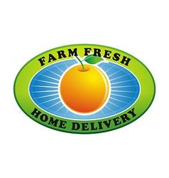 fresh orange nutrition fruit vector image
