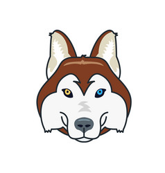 husky dog head mascot flat style different eyes vector image vector image