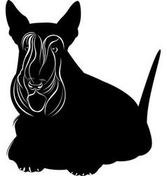 scotch terrier vector image