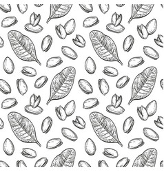 seamless pattern with pistachio nuts vector image