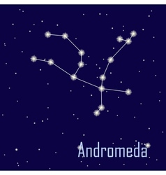 The constellation andromeda star in the night sky vector