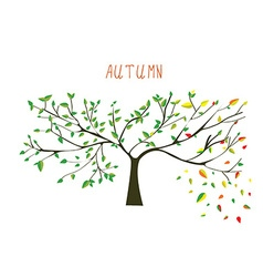Autumn is coning tree vector image