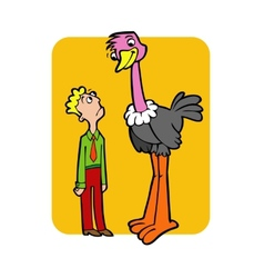 Ostrich vector image