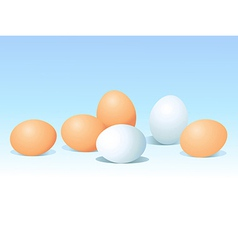 Eggs on blue background vector
