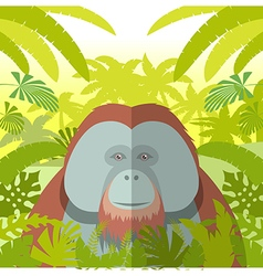 Orangutan on the Jungle Background vector image