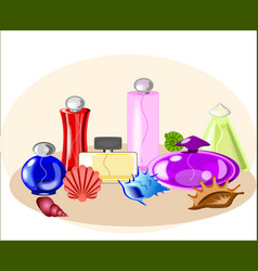 perfume set with seashells vector image vector image