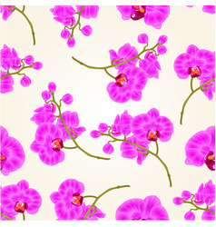 Seamless texture branches orchid phalaenopsis vector
