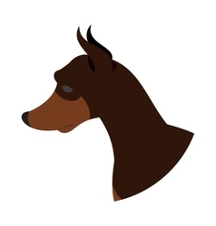 Dog head doberman pinscher vector