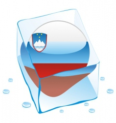 Frozen button flag of slovenia vector