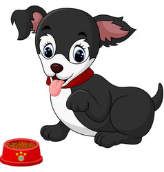 cute dog boston terrier sitting vector image