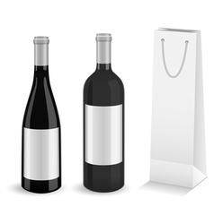 Wine bottles with bottle gift bag vector image