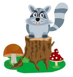 Racoon on hemp tree vector image