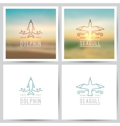 Logo dolphin and seagull vector
