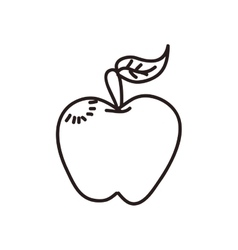 apple icon Sketch design graphic vector image vector image