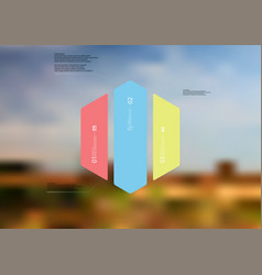 Infographic template with hexagon vertically vector