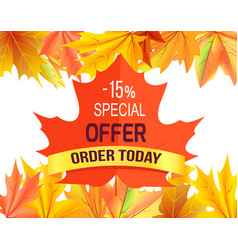 Special offer - 15 order today promo advertisement vector