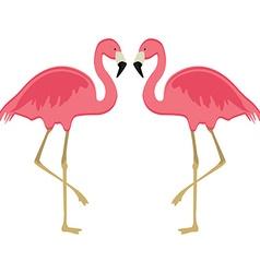 Two pink flamingo vector