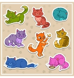Cats stickers set vector