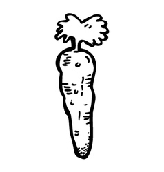carrot doodle vector image
