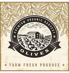 Vintage olive harvest label vector