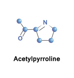 acetyl pyrroline aroma vector image