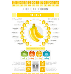 food infographics poster banana fruit vector image vector image