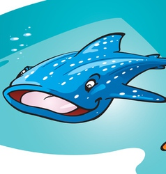whale shark vector image