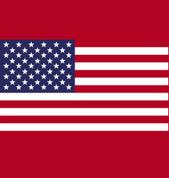 American national united states flag vector