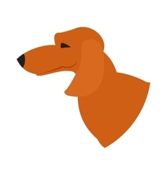 Dog head dachshund vector