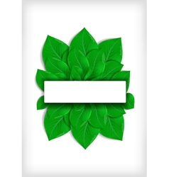 Green leaves with banner vector image