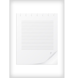 Lined paper with curled corner vector image vector image