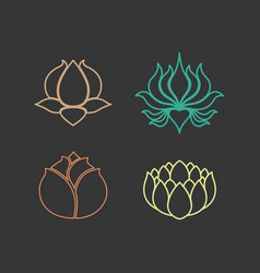 Lotus logo design icon set vector