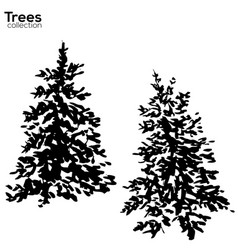 Trees collection ink fir silhouettes vector